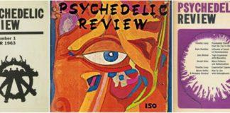 A ciência da psicodelia, nas páginas do Psychedelic Review