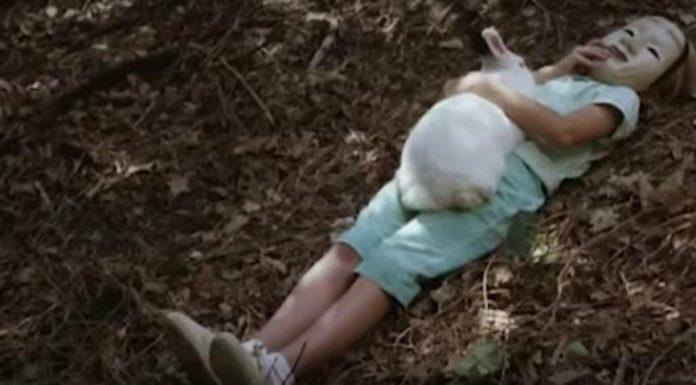 Coelhinhos nada fofinhos da história do cinema
