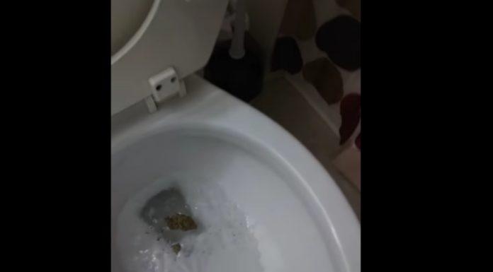 Pai encontra maconha do filho em casa, joga tudo privada abaixo e grava vídeo dando esporro no moleque