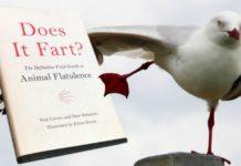 Um livro que explica como os animais peidam