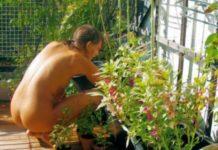 World Naked Gardening Day: tire a roupa e cuide do seu jardim