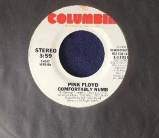 Comfortably Numb: o clássico do Pink Floyd vai BEM além de música e letra