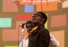 Harlem Cultural Festival: Stevie Wonder
