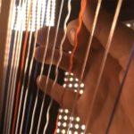 AcousticTrench: músico refaz tema de Stranger Things com harpa e violoncelo