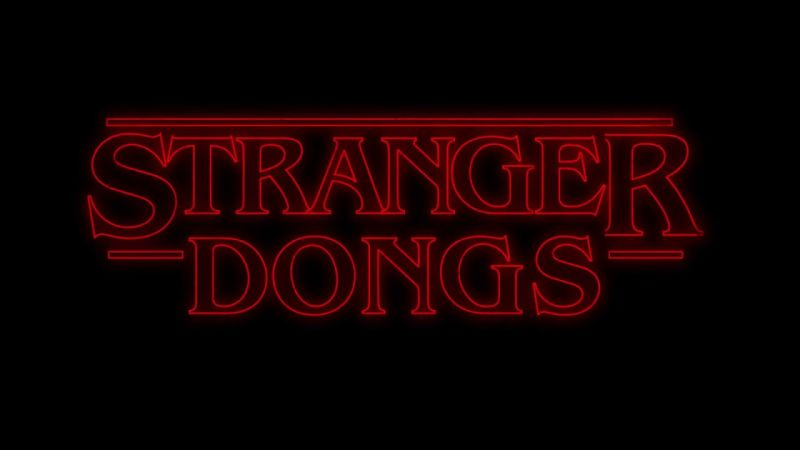 """Lançaram um vibrador de """"Stranger things"""" (!)"""