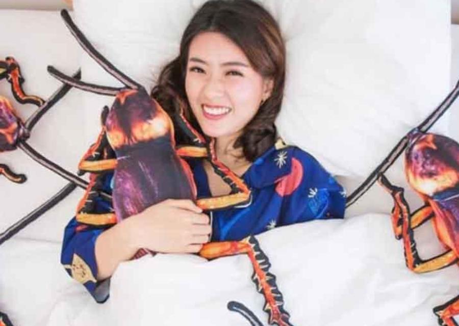 Inventaram um travesseiro em forma de barata
