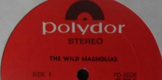 Podcast: Wild Magnolias no INVISÍVEL