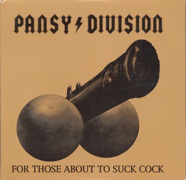 Aquela vez em que o Pansy Division fez tributo LGBT ao AC/DC