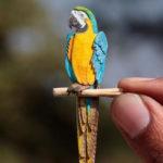 365 Dias de Miniatura de pássaros no Instagram