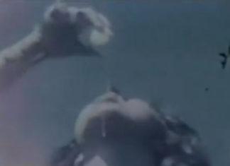 The Egg: o curta do qual Madonna participou em 1974