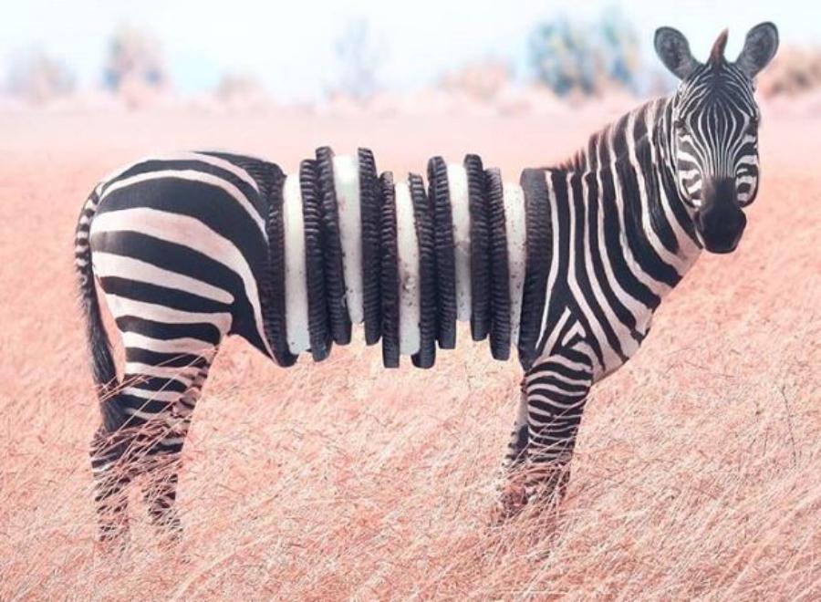 Um cara fez fotos mashups de fotos misturando corpos de animais com alimentos
