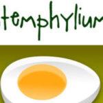 E o Stemphylium, que voltou?